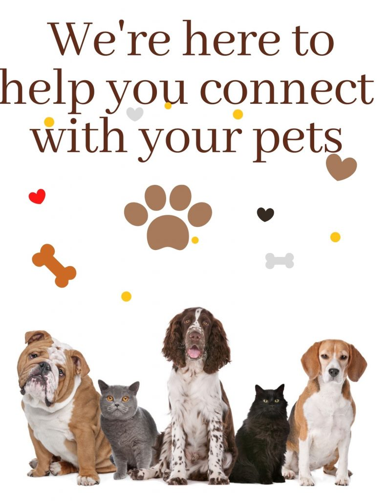 Pet-Connection - Here-to-help-you-connect-with-your-pets